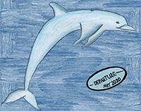 child's drawing of a porpoise